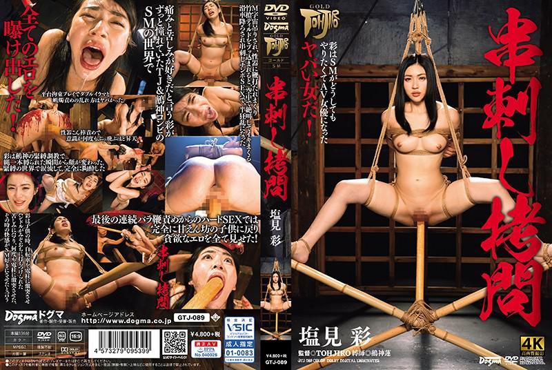 GTJ-089 串刺し拷問 塩見彩